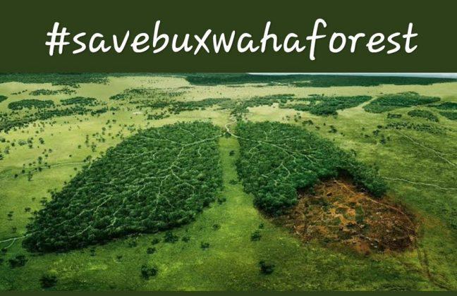 Buxwaha Forest Issue- A Major EnvironmentalConcern